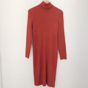 NWT Spense Turtleneck Sweater Dress Size Large
